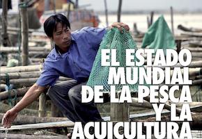 El estado mundial de la pesca y la acuicultura 2016